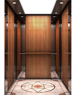 Passenger Elevator for residential building